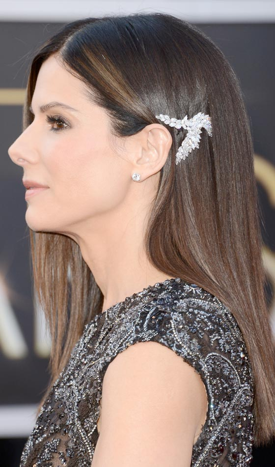 Sleek Accessorized Hair